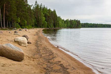lake beach: Wild nothern forest lake beach Stock Photo