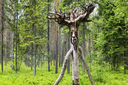 Madera esp�ritu ruso del bosque salvaje