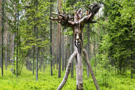 Wooden russian spirit of the wild forest Stock Photo