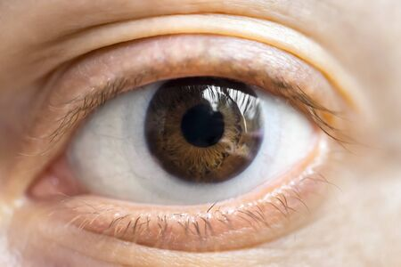 brown eye: Brown eye with lens Stock Photo