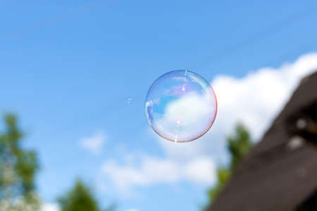 blue cloudy sky: Clear soap bubble in blue cloudy sky