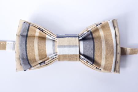 Modern butterfly bow tie