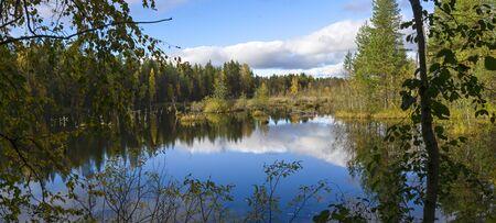 quagmire: Beautiful swamp in nothern taiga