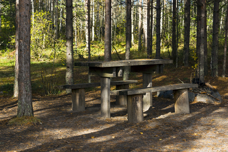 Wooden table and benches in the forest