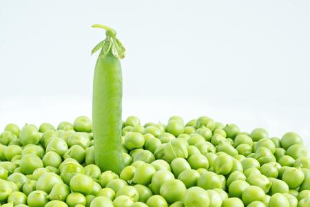 pea pod: Pea pod in pile of peas