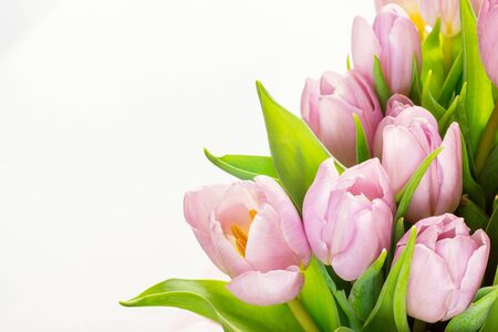 Bouquet of flowers - pink tulips
