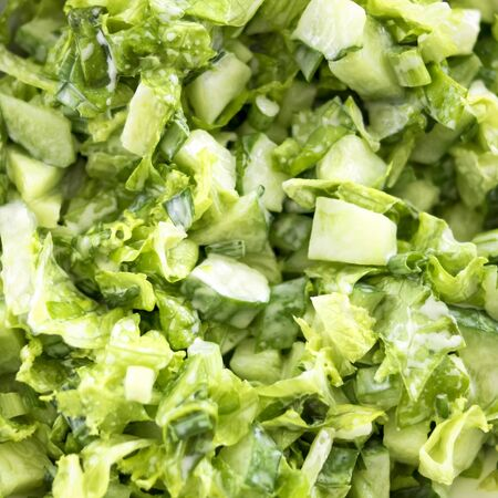 Green salad of cucumbers, lettuce, onions and parsley