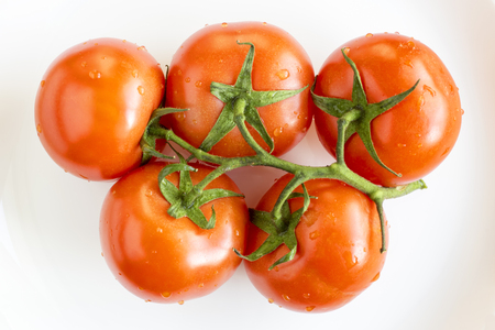 Ripe tomatoes on branch