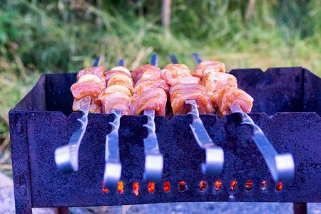 Pork meat roasting on skewers on picnic
