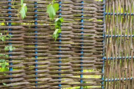 Bamboo wicker fence