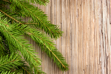 Fir-tree branch Christmas time background