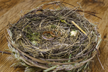 Gold wedding rings in a real birds nest