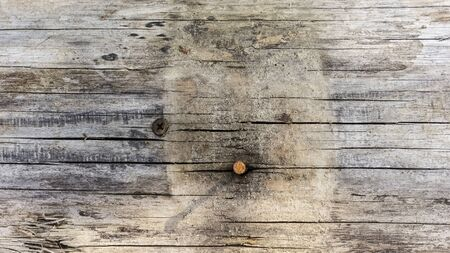 Wooden background textured board with rusty nail hat