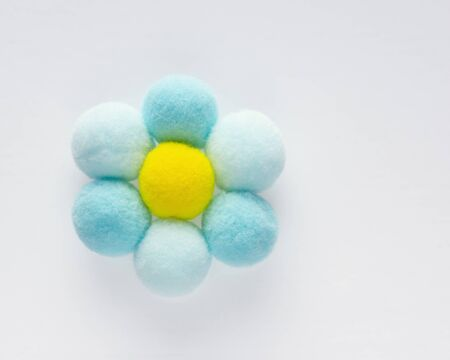Delicate fluffy round pompons form a camomile Stock Photo