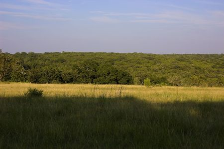 south texas: South central Texas land with sun and shade
