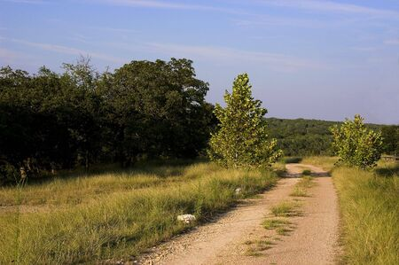thru: Dirt road thru a Texas hill country ranch Stock Photo