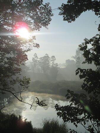 kerala: Early morning sunlight in Munnar, Kerala, India Stock Photo