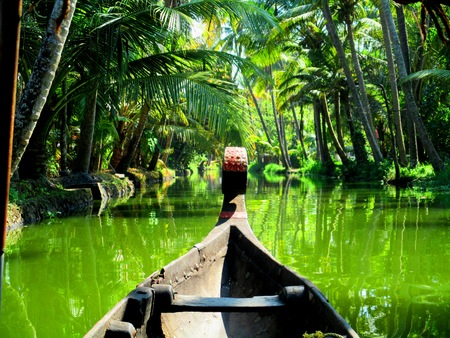 dugout: The bow of a dugout canoe rowing through the Kerala backwaters in India