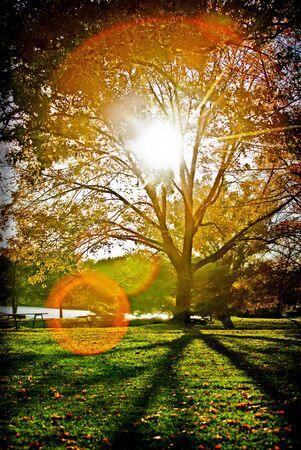 sunburst Stok Fotoğraf