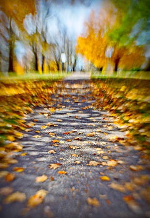 the path Stok Fotoğraf