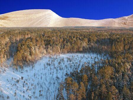 Wild taiga in west-Siberië. Luchtfoto. Frost in zonnige dag. Witte stilte.