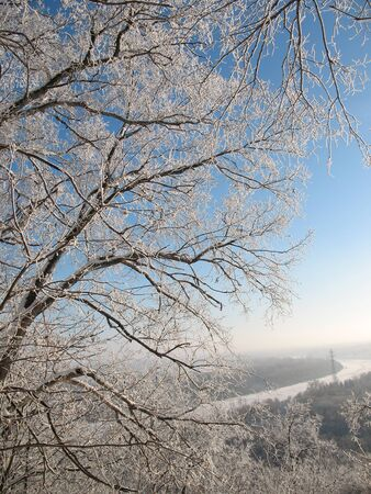 Frost in the icy silence forest. Sunny day in wild Siberian taiga. Descent to a river. Stock Photo - 4045346
