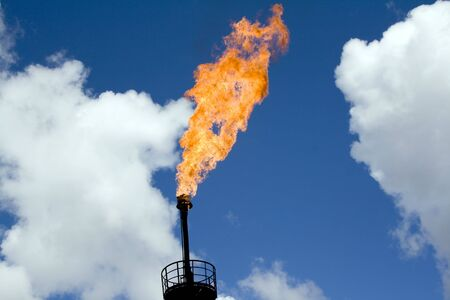 Oil torch in West Siberia. Pollution of environment  photo