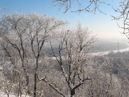 Viajes en el bosque de silencio. Día soleado en la taiga de Siberia silvestres. Rio de hielo. Foto de archivo - 4966338