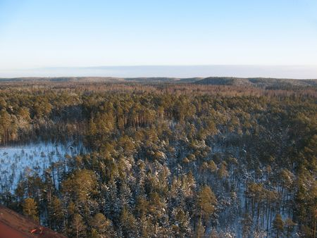 Wild taiga in west Siberia. Aerial view. Frost in sunny day. White silence. Stock Photo - 5031156
