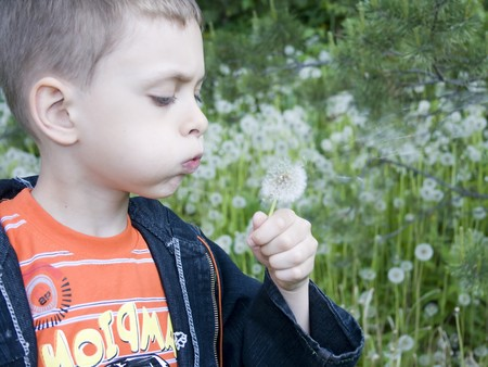 Young boy play on a summer meadow Stock Photo - 7806990