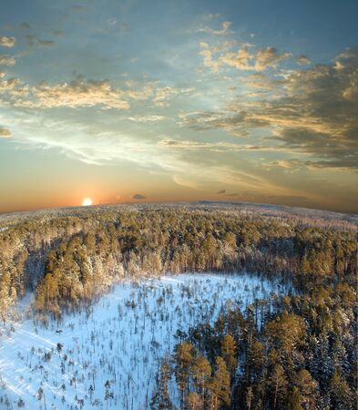 Beautiful sunset in wild forest. Panoramic view