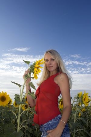 Beautiful girl in a red dress and jeans holds in a hand a sunflower in a field. Summer evening. Blue sky and white clouds above sunflower field photo
