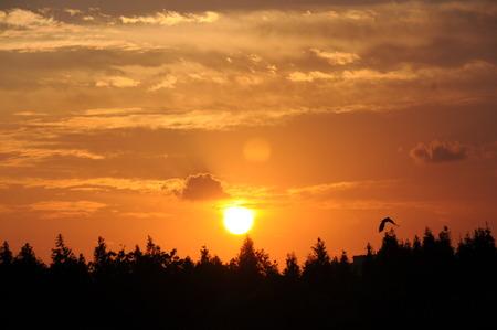 unendlich: Sunset Sch�nheit, Sonnenuntergang und attraktiver: Schie�en in Shanghai Daning Lingshi Park.