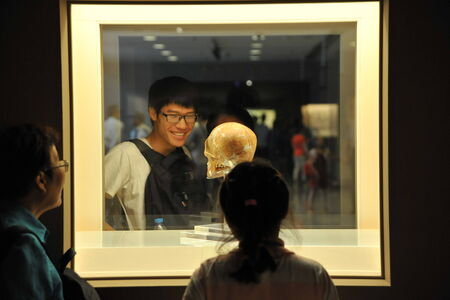 Shanghai first human skull found: History proves Shanghai civilization up to 6 years Editorial