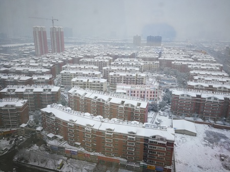 snowing: snowing in the city