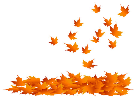 Autumn maple leaves falling into a pile Vector