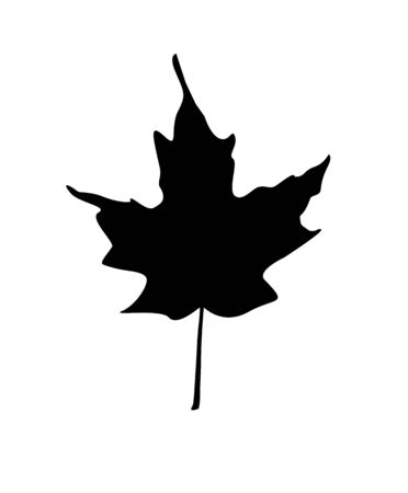 Black silhouette clip art of a maple leaf