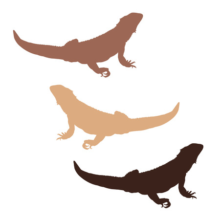 bearded dragon lizard: Set of 3 colored bearded dragon silhouettes Illustration