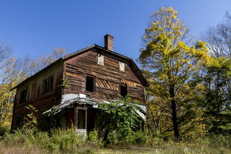 森の中の廃屋