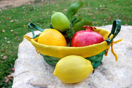 Various fresh fruits in basket and without basket on the on natural large stone: lemon, pomegranate, orange, lime Concept Gifts of Nature