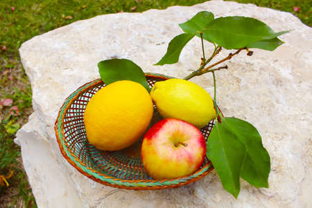 Various fresh fruits in basket on the natural stone: lemon, orange, apple. Concept gifts of nature