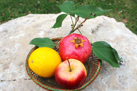Various fresh fruits in basket on the natural stone: pomegranate, orange, apple. Concept gifts of nature