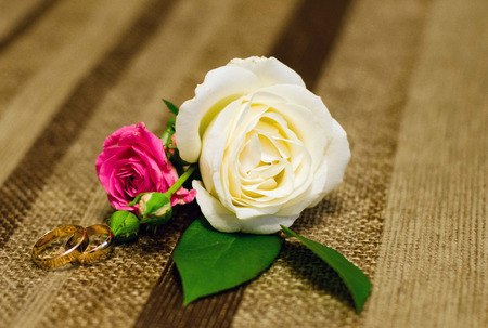 Wedding rings and rose Reklamní fotografie