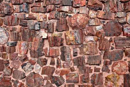 colo: A wall of the Agate House in Petrified Forest National Park, Arizona.