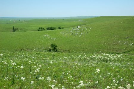 The rolling hills of the Kansas Flint Hills.