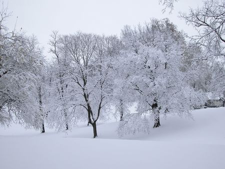 Snowy scene with hills and trees.