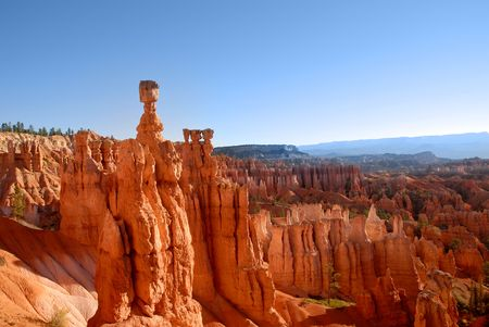 thor's: Hoodoos in the morning light in Bryce National Park, Utah. Thors Hammer is tallest hoodoo to the left. Stock Photo