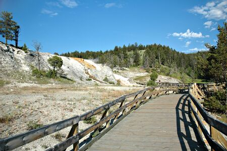 minerva: Boardwalk at Minerva Terrace in Yellowstone National Park, Wyoming.