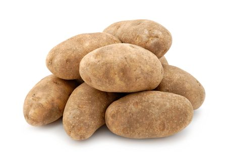 russet: Russet potatoes isolated on a white background. Stock Photo