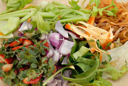 Vegetable peelings and food scraps ready for the compost. Stock Photo